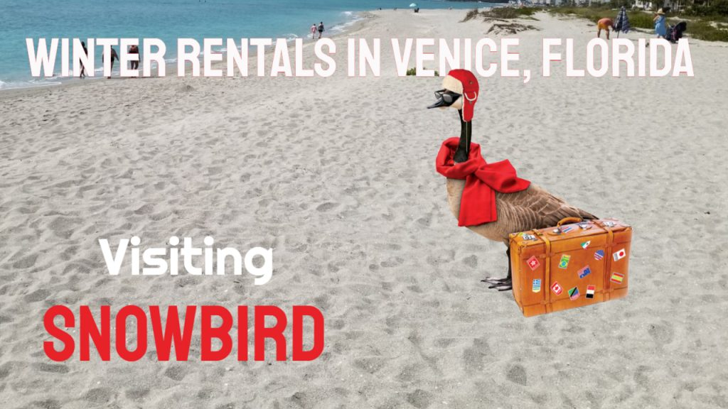 Winter Rentals in Venice, Florida
